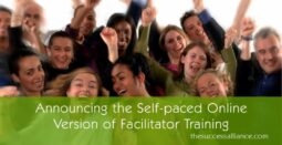 Mastermind Group Facilitator Training online