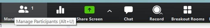Zoom host controls